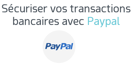 paypal securite transaction